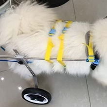 Load image into Gallery viewer, Dog Mobility Back Legs Wheelchair