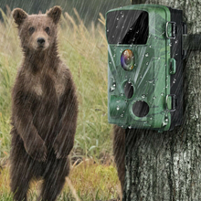 Load image into Gallery viewer, Waterproof Wildlife Game Hunting Security Deer Trail Camera