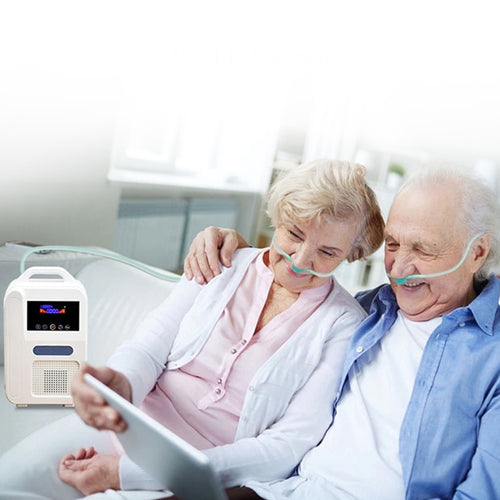 Small Portable Oxygen Concentrator Tank For Breathing | Zincera