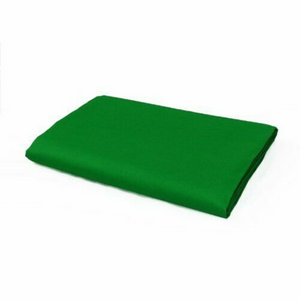 Portable Green Screen Backdrop 5ft x 10ft | Zincera