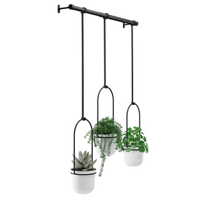 Modern Indoor Ceiling Hanging Flower Planter | Zincera