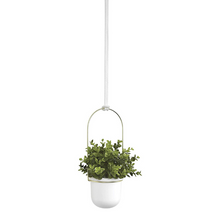 Load image into Gallery viewer, Modern Indoor Ceiling Hanging Flower Planter | Zincera