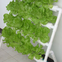 Load image into Gallery viewer, Premium Hydroponic Garden Tower System Setup Kit 36 Sites | Zincera