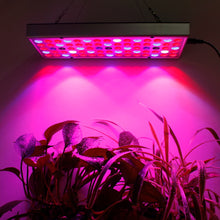 Load image into Gallery viewer, Plant LED Grow Lights Full Spectrum Indoor | Zincera