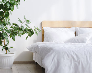 Let's Talk About Egyptian Cotton