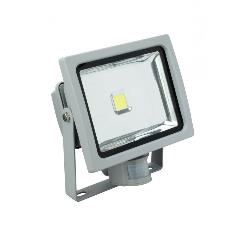 Robus RMX03030DG-24 Floodlight Warm Wit ledlamp met bewegingssensor