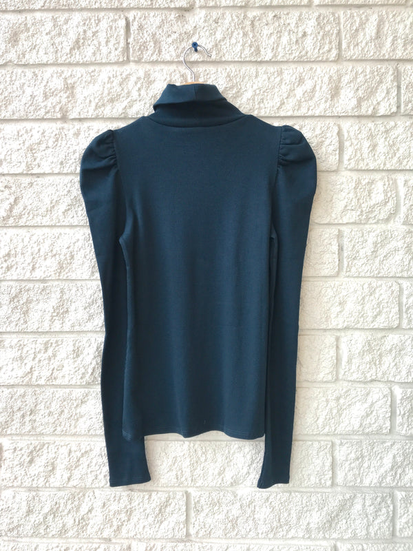 CEDAR TURTLENECK
