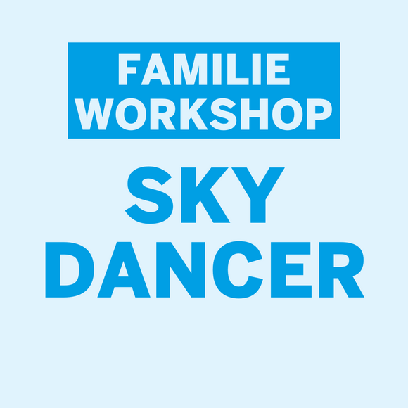 Familie workshop Henk Rijckaert • Skydancer • Maandag 2 november 2020