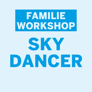 Familie workshop Henk Rijckaert • Skydancer • Dinsdag 22 december 2020