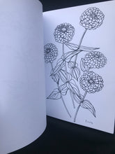 Load image into Gallery viewer, Buds Along the Path Coloring Book