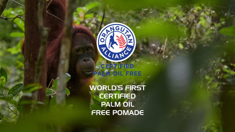 orangutan alliance, palm oil free, accredited, certified, www.oranguatanalliance.org, www.thewindsorend.com