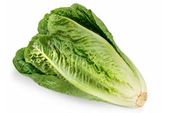 Romaine Lettuce each