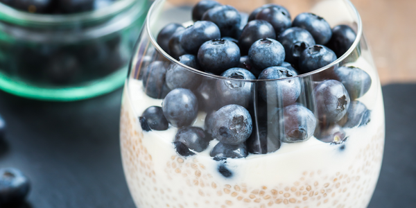 Kinetica Chia Protein Pudding