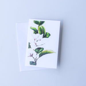 Magnolias | Bank Card