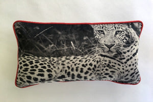 photographed and digitally printed onto a luxurious velvet,piping available in velvet or black and white check.