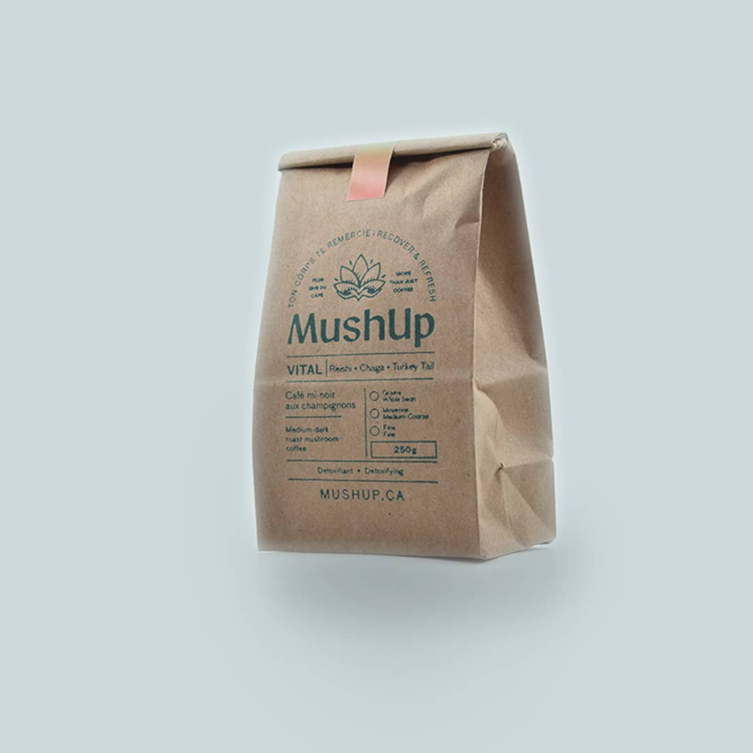 MushUp - Immune System Boost Coffee - Vital - Reishi, Chaga, and Turkey Tail Infused Coffee