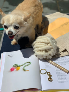 Dog Leash Kit - Big Loop Yarn