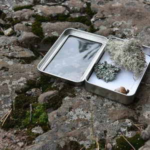 Natural Specimen Collecting Kit