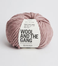 Load image into Gallery viewer, Wool and the Gang Crazy Sexy Wool