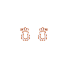 force 10 Earrings