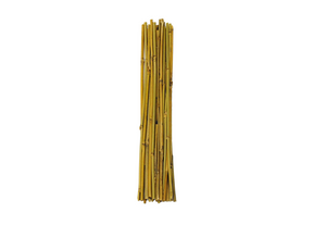 Mondi Bamboo Steaks conveniently come in 3', 4', and 6' lengths for staking delicate or heavy plants in your garden. These are all-natural bamboo stakes with no artificial coatings or colouring.
