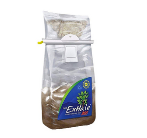 The Exhale 365 bag comes with everything you would get in a regular, pre-enoculated bag except this one requires activation. Remove the hanger, move the mycelium down with your fingers until its on the substrate. Once there it will take approximately 2 weeks for it to get up to top-CO2-production.