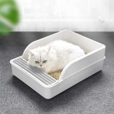White cat Sandbox - All my Cat