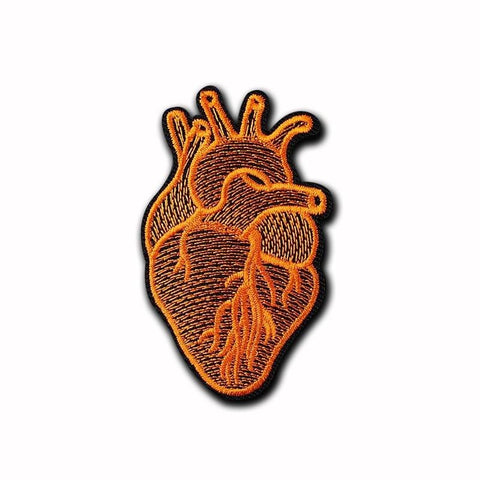 Anatomical Heart Patch - Expressionco