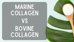 Marine Collagen Vs. Bovine Collagen