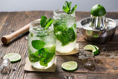 Alkalizing Virgin Mojito Recipe