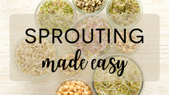 Sprouting Made Easy