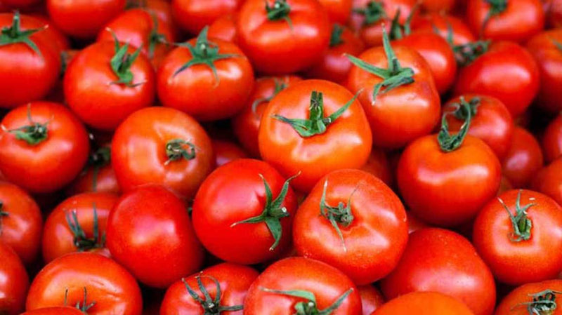 Tomatoes Aiding Prostate Health