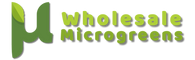Wholesale Microgreens