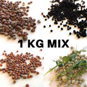 1 Kg Mix of Seeds