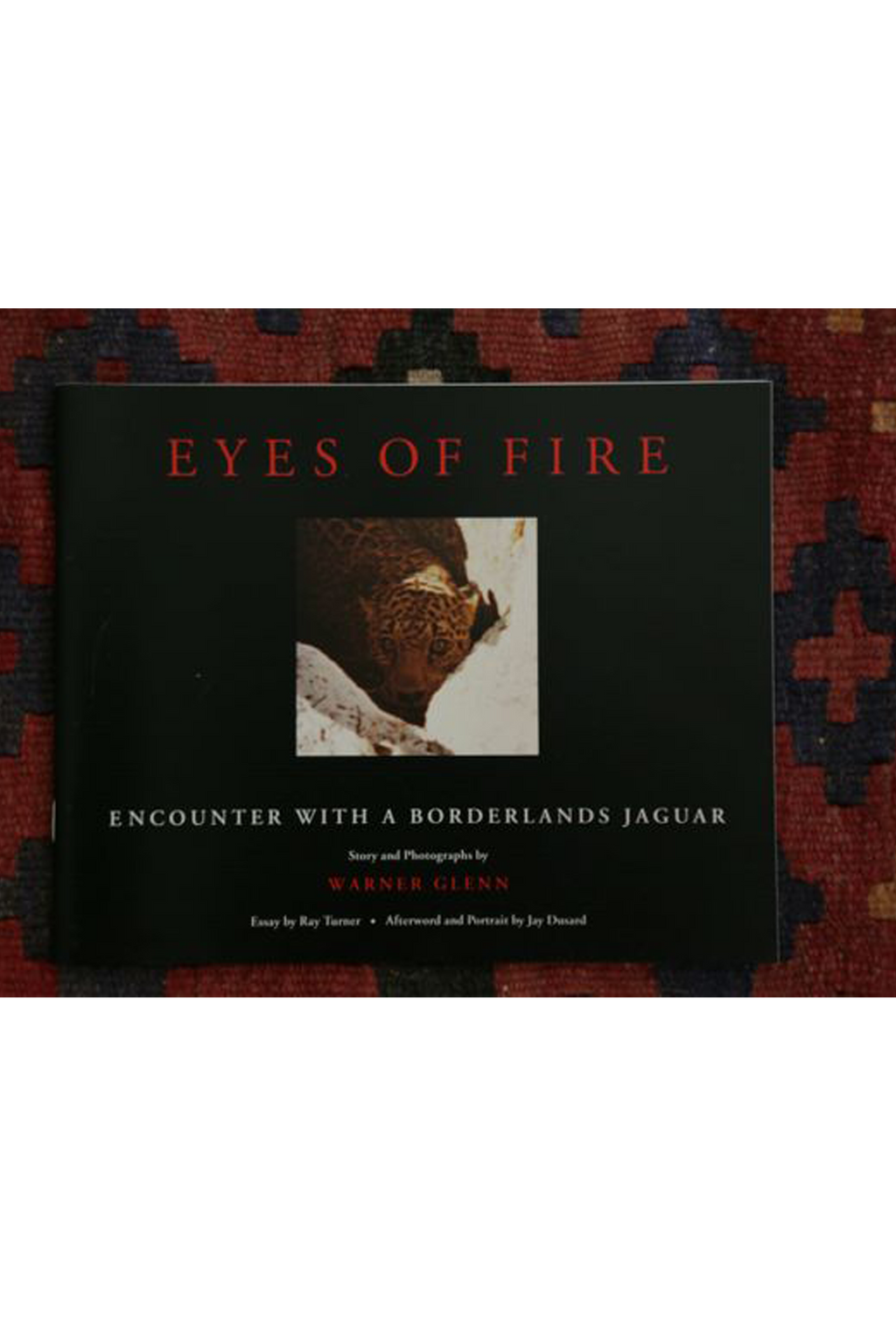 """Eyes of Fire: Encounter with a Borderlands Jaguar"" by Warner Glenn"