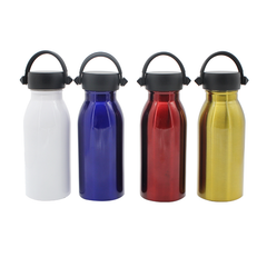 HWD45 - MINT STAINLESS STEEL BOTTLE