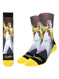 Freddie at Wembley Sock