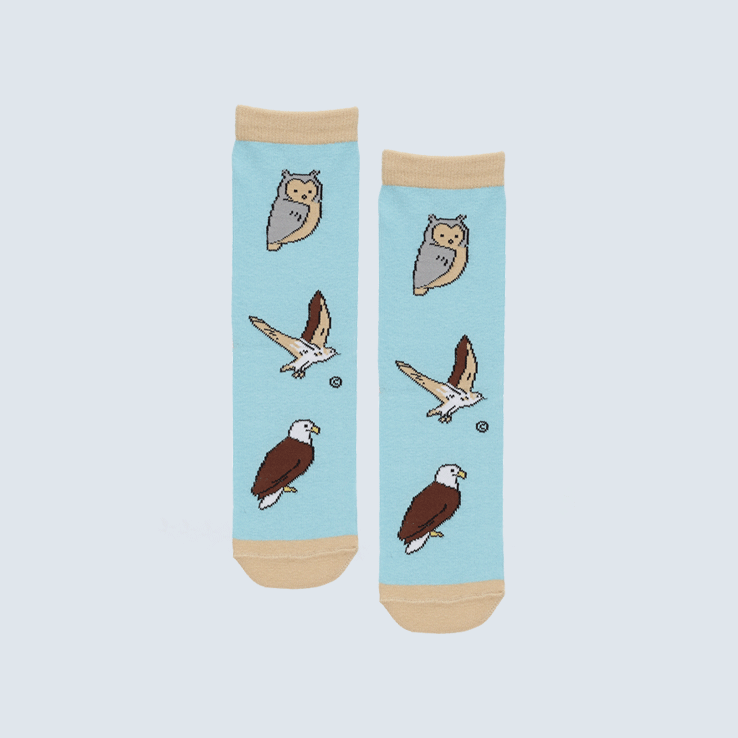Birds of Prey Socks