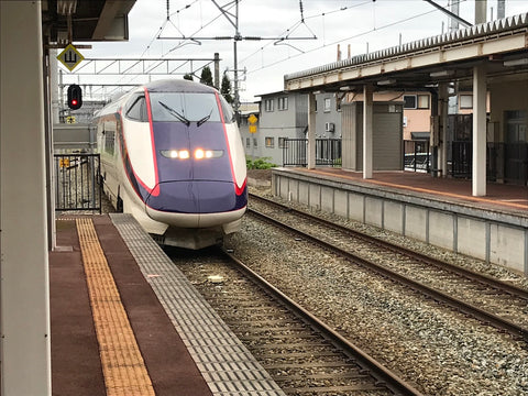 After 75 to 90 minutes, arrive at a station in Tochigi Prefecture(Tochigi)