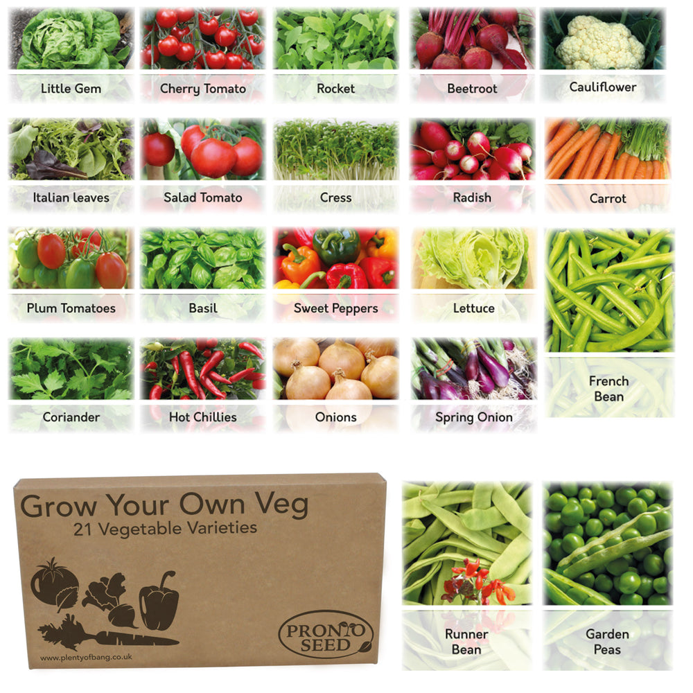 Bumper Vegetable Seeds Pack 21 Varieties with Over 1700 Seeds