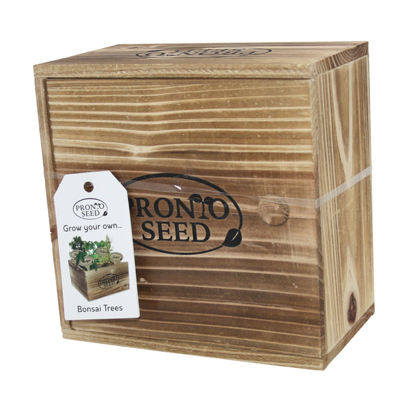 Bonsai kit, Bonsai Tree Growing kit, Premium Bonsai Set, Grow 4 Most Popular Varieties from Seed in Reusable Wooden Box