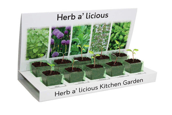 Herbs Herb-a-Licious Grow kit 100% Recyclable 5 Varieties to Grow Your Own Kit from Seed Eco Gifts Made with 100% Recyclable Materials