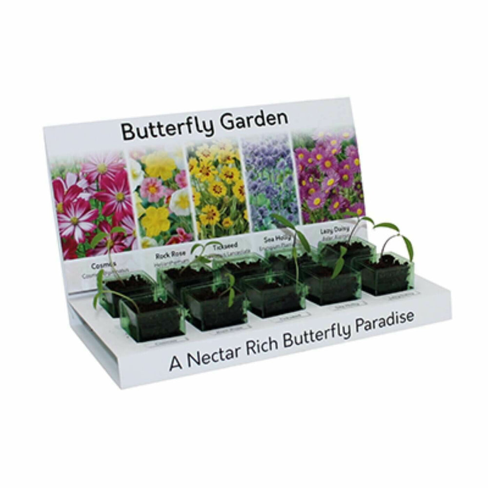 Butterfly Eco Grow Kit 100% Recyclable 5 Varieties to Grow from Seed Made with 100% Recyclable Materials