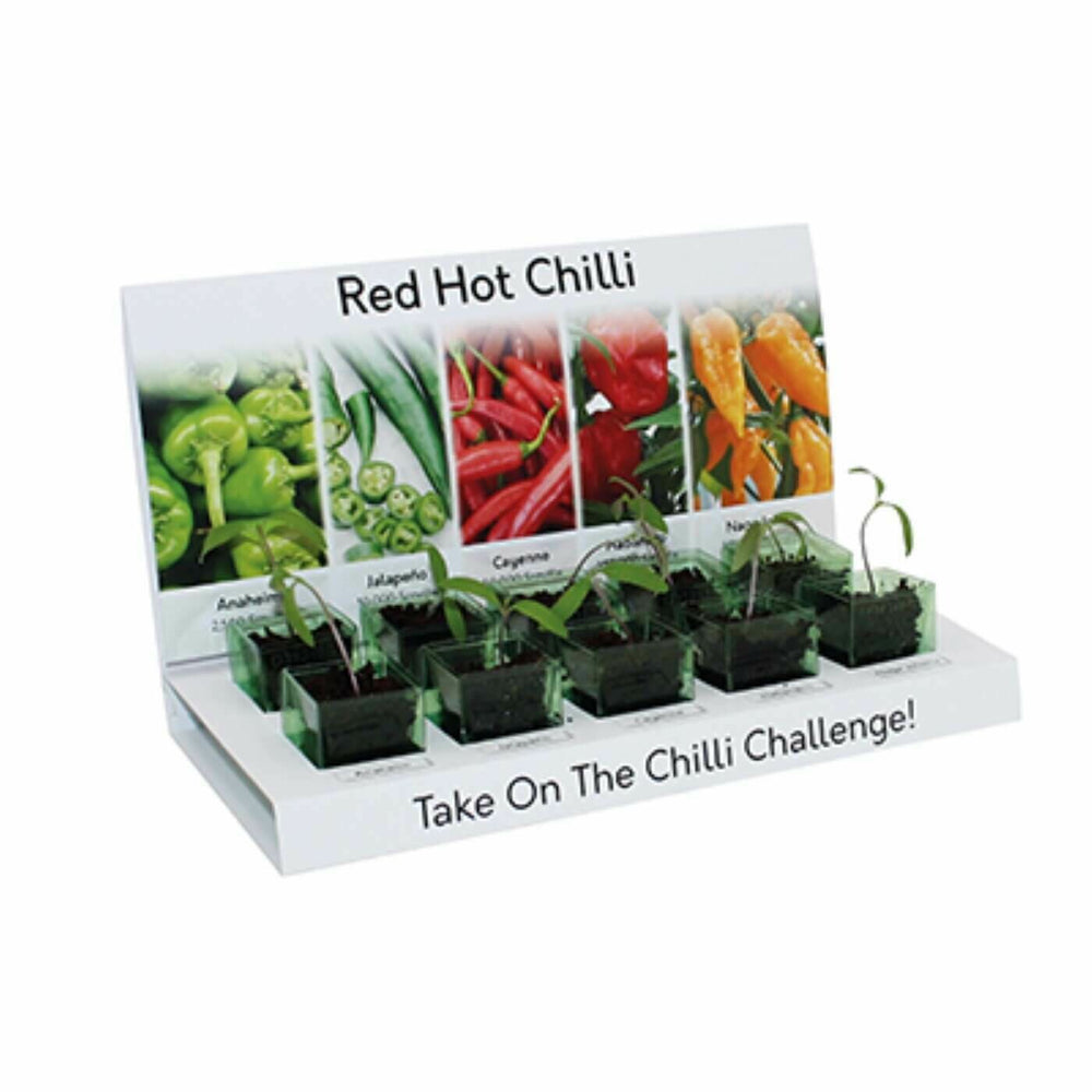 Chilli Eco Grow Kit 100% Recyclable 5 Varieties to Grow from Seed Made with 100% Recyclable Materials