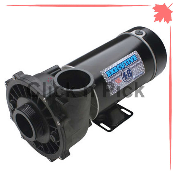 "3421221-1A Waterway Spa Pump 3HP 230V 2"" 2-Speed 48-Frame - clicknpickcanada"