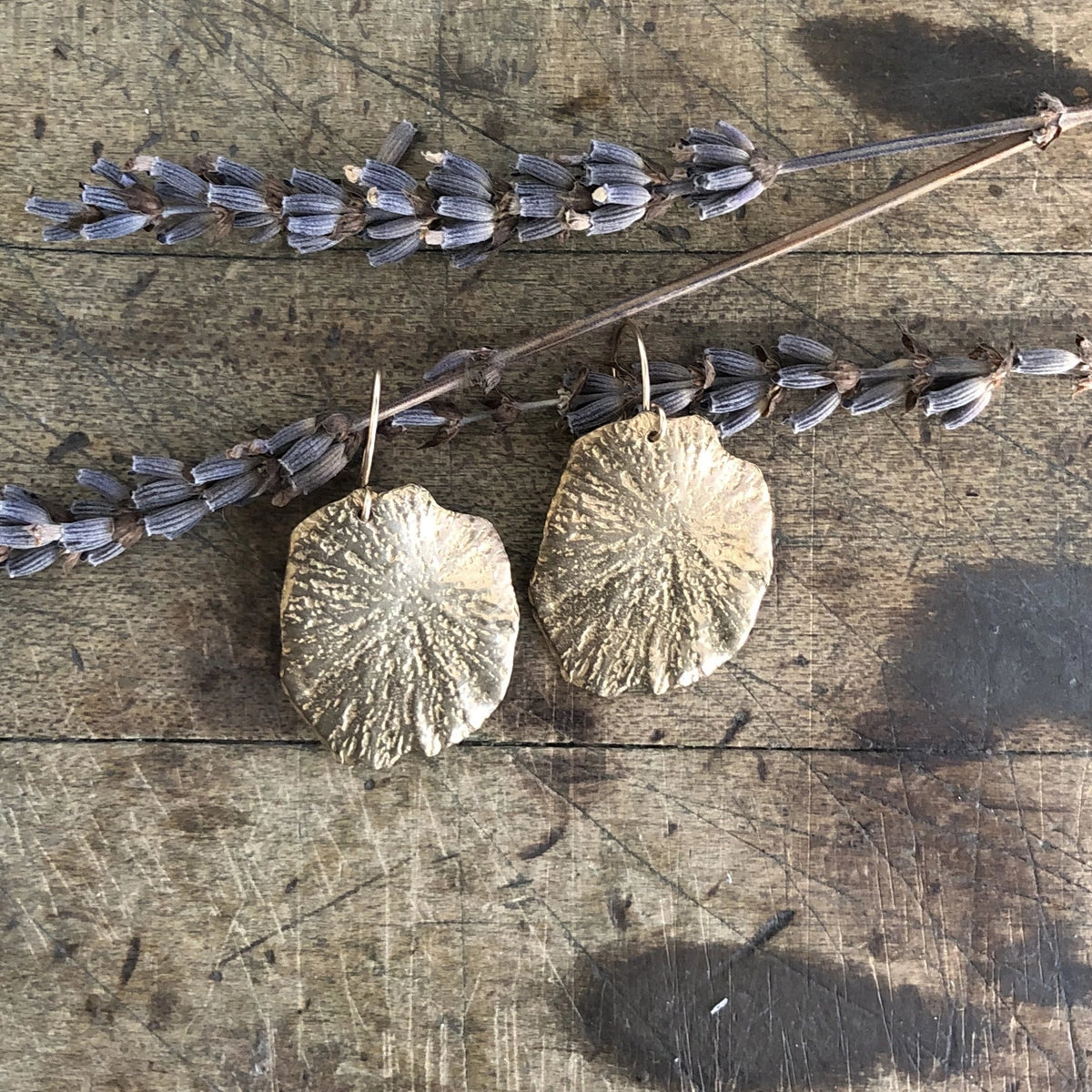 Mini Sand Dollar Earrings