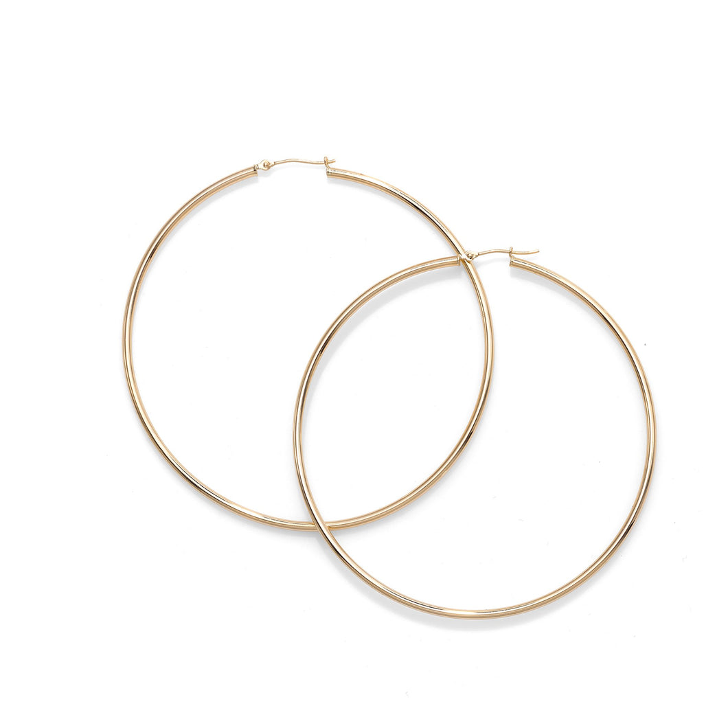 Hoop Earring with Hinged Clasp