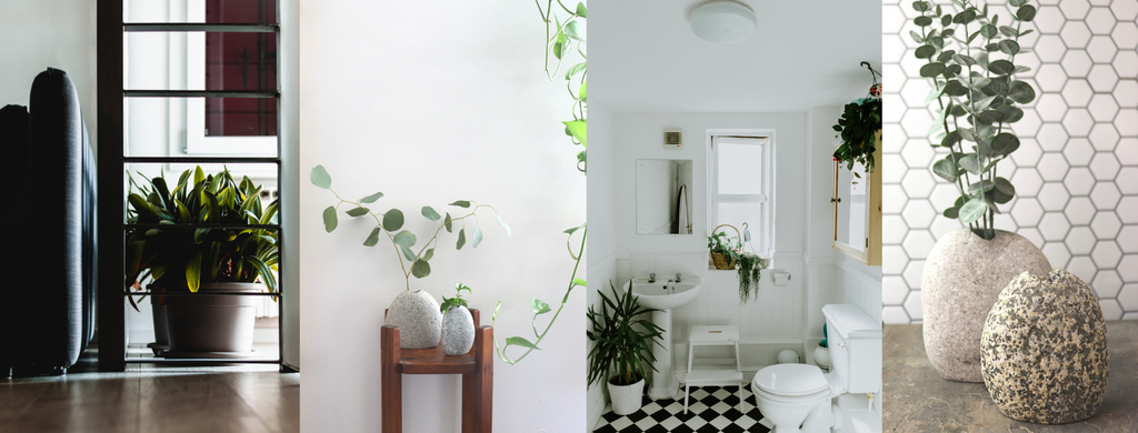 Four Images (left to right): A dark room with hardwood floors and a green floor plant, two stone vases with greenery inside of them, a bathroom interior with black and white tile floors and green plants, two stone vases in front of a honeycomb tile backdrop.