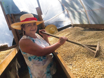 Meet Our Farmers – Finca El Trapiche, Honduras