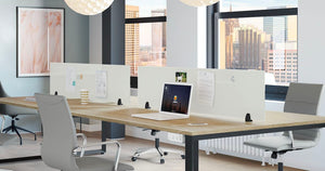 Workstation Magnetic Glass Privacy Screen Private Spaces